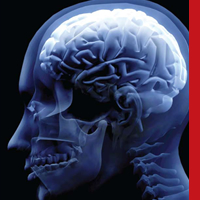 Comentarios en neurociencia: Regeneración neuronal al rescate de la memoria
