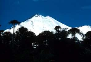 Volcán Llaima (Chile)
